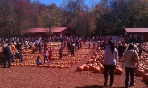 Fire Inc. Atlanta at Burt's Pumpkin Patch